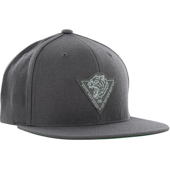 Matte Grey Big Dog Tri Snapback Image